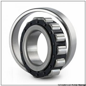 30 mm x 62 mm x 16 mm  NSK NJ 206 ET Cylindrical Roller Bearings