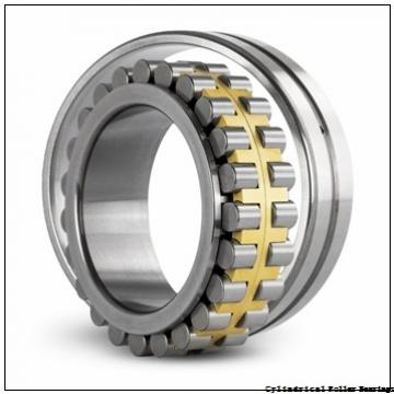 120 mm x 215 mm x 40 mm  NSK NU 224 M Cylindrical Roller Bearings