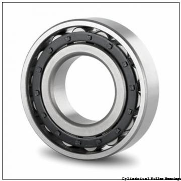 95 mm x 170 mm x 43 mm  NSK NU 2219 W Cylindrical Roller Bearings