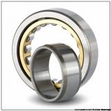60 mm x 130 mm x 31 mm  NSK NUP 312 W Cylindrical Roller Bearings